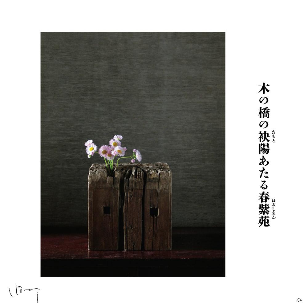 味岡伸太郎花頌抄2 5月(春紫苑)