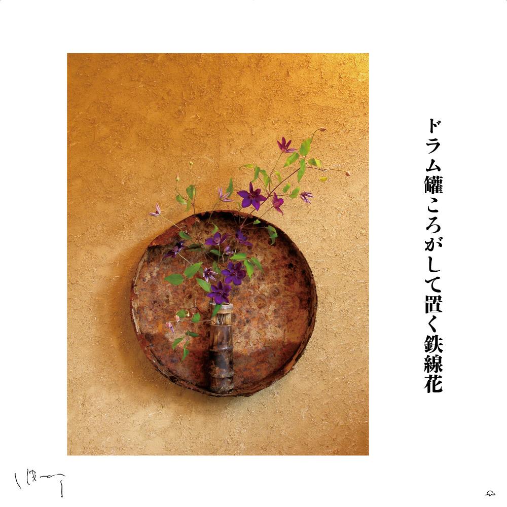 味岡伸太郎花頌抄3(6月鉄線花)