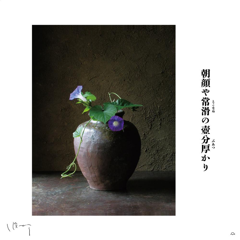 味岡伸太郎花頌抄3(9月朝顔)