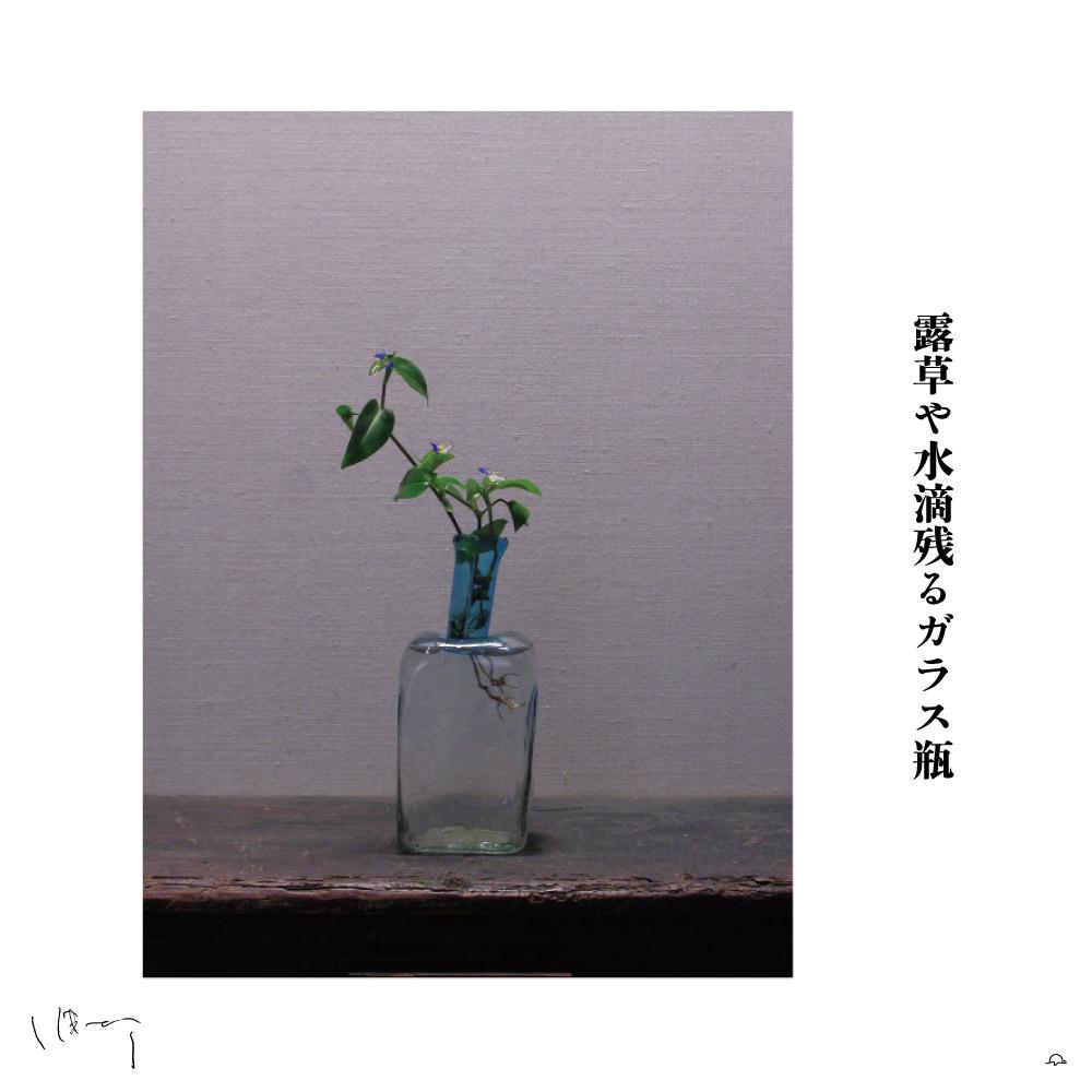 味岡伸太郎花頌抄 110月(露草)