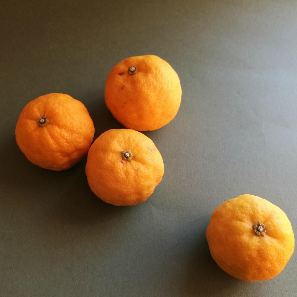 花柚子-一才柚子