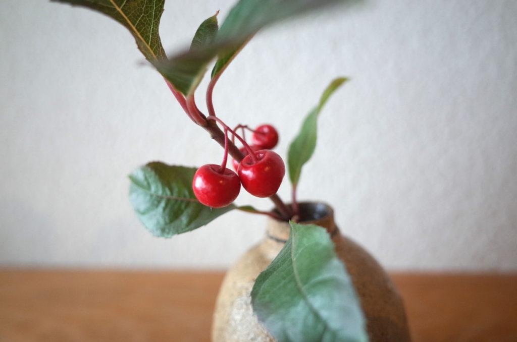 藪柑子、十両