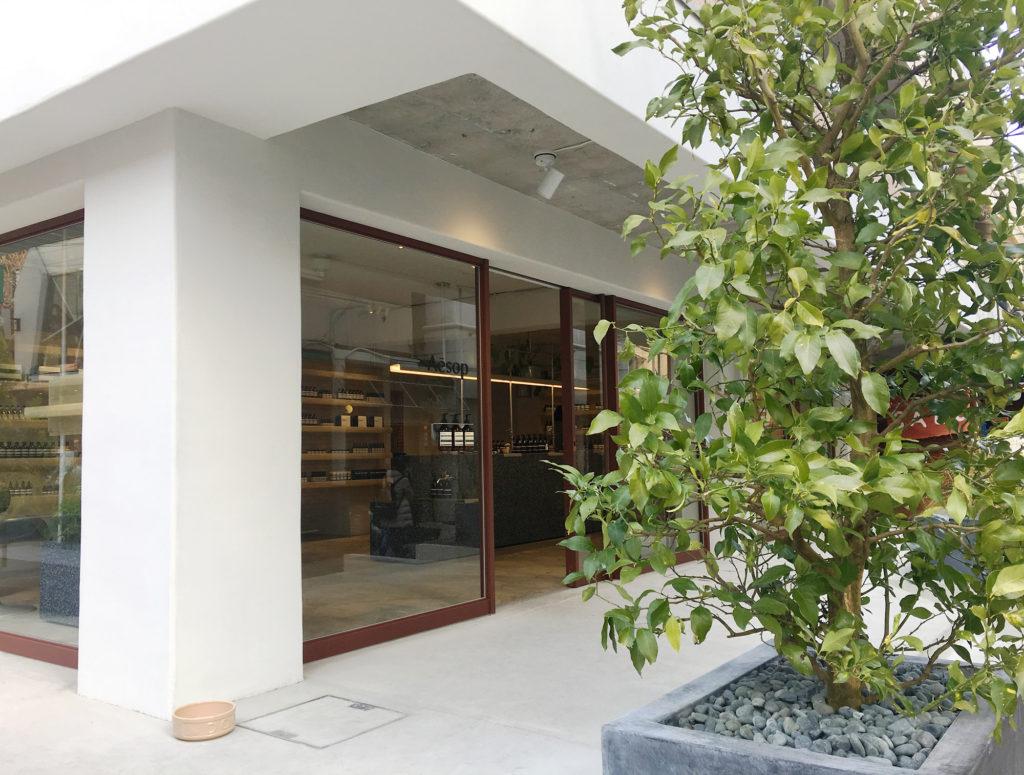 色彩のフィールドワーク:もてなす緑 加藤幸枝aesopイソップ東京自由が丘店フランスの建築家集団 シグー(Ciguë)
