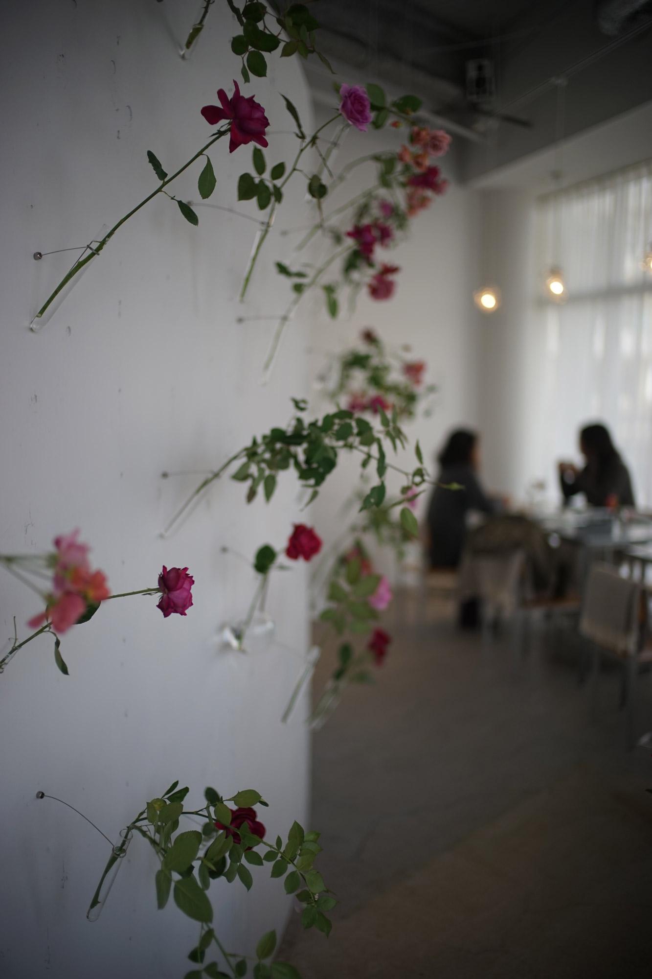松澤穣暮らしを映すカメラ 和バラカフェ