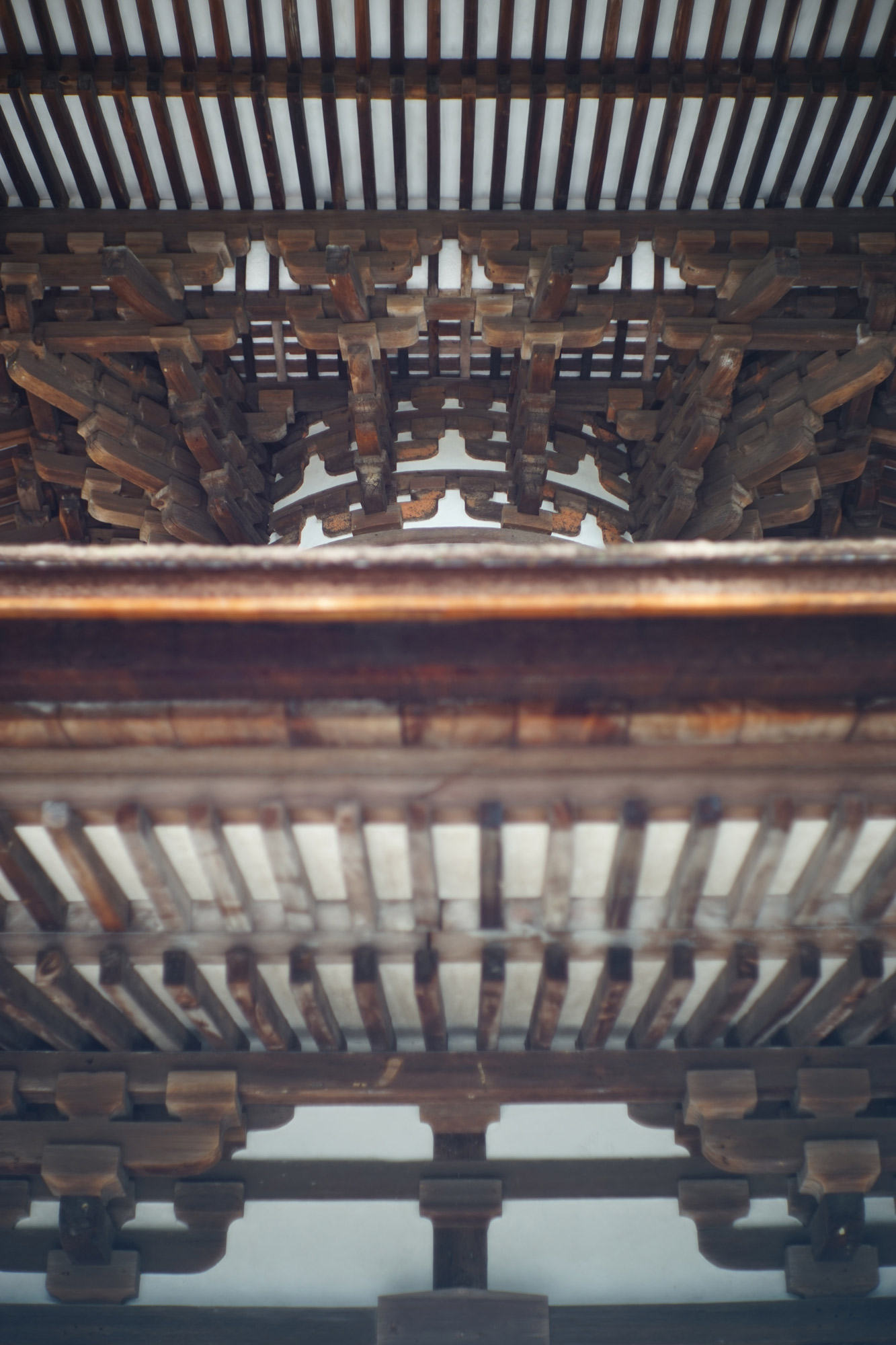 松澤穣暮らしを映すカメラ 滋賀県大津市:石山寺
