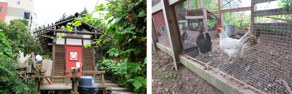 インターナショナル地区の納屋(左)鶏小屋(右)