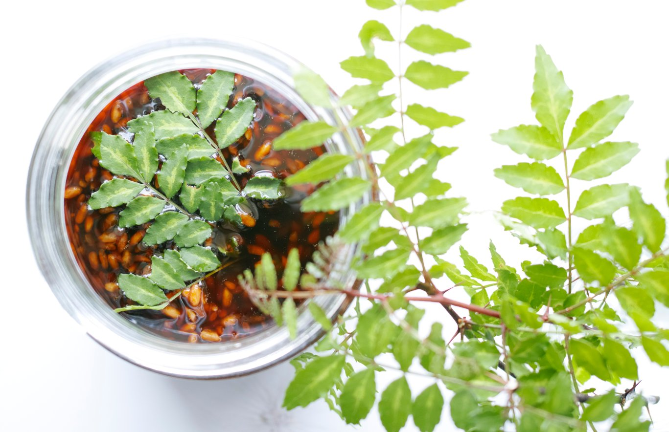山椒と醤油麹
