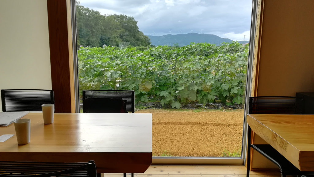 浜松市ノーティスの店内から見える畑