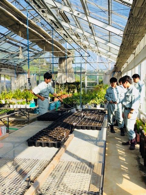 大埜地の集合住宅 農業高校 温室