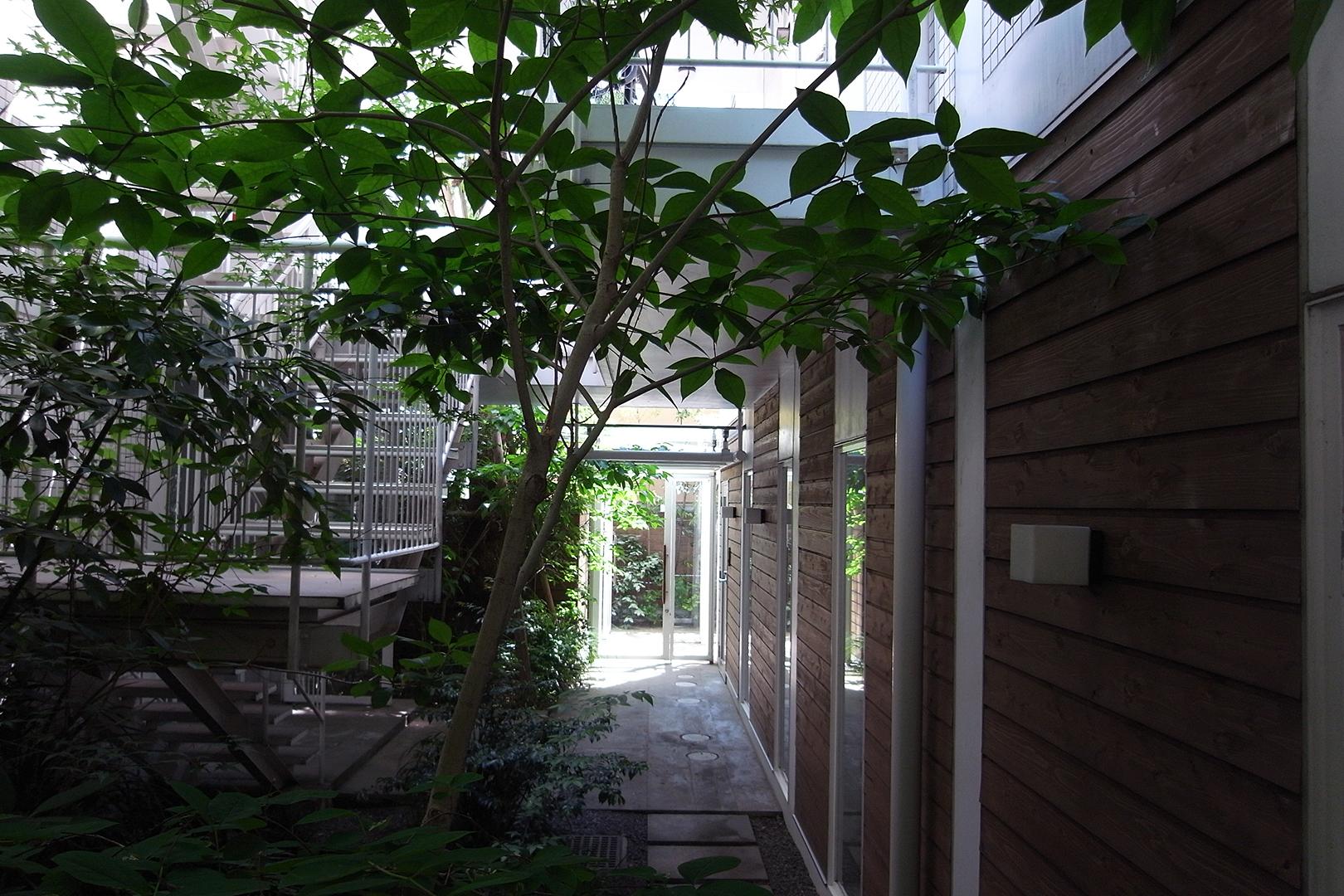 緑の育った中庭
