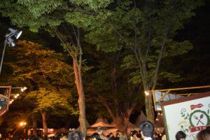 夜のさっぽろ大通り公園