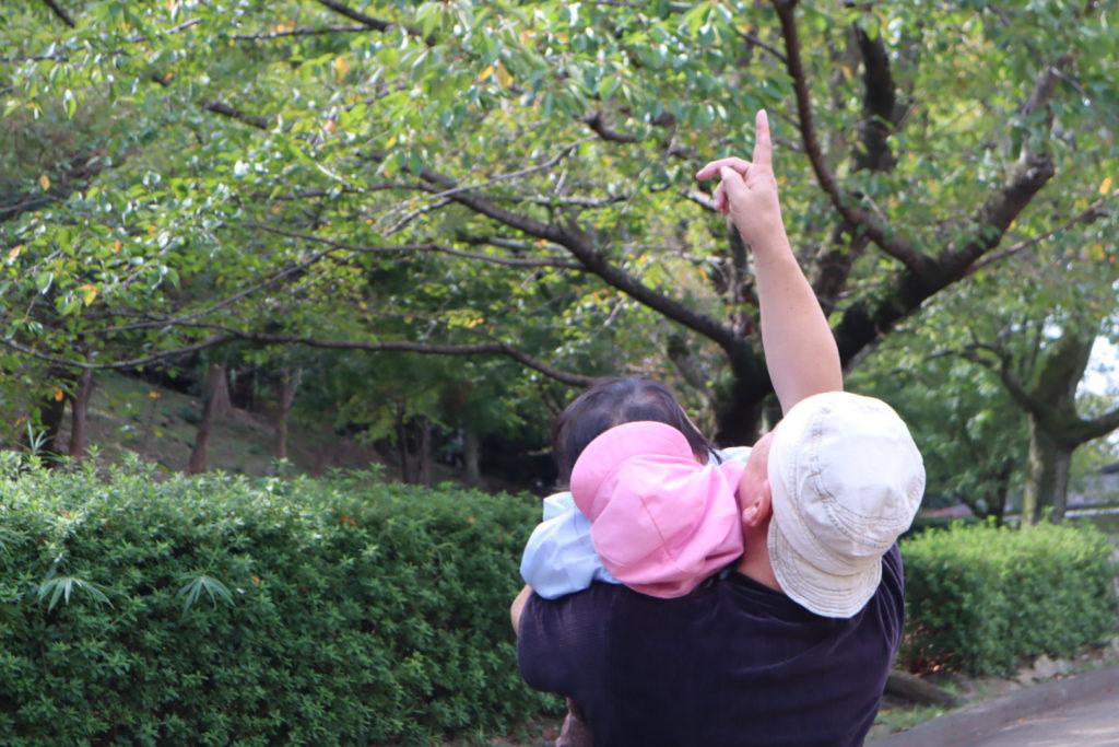 上を見上げるおじいちゃんと孫