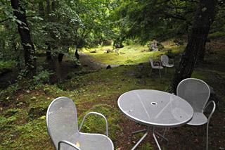 北欧の森の様な庭