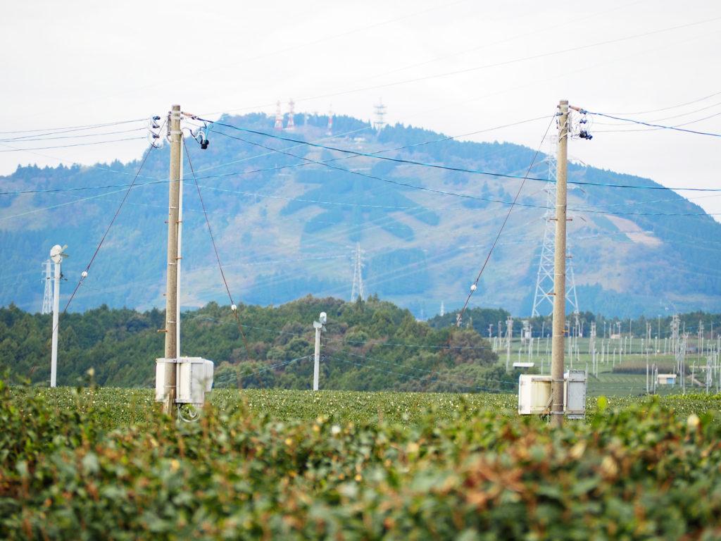 """""""茶""""文字の山は、おとなり掛川市の粟ヶ岳の茶の文字"""