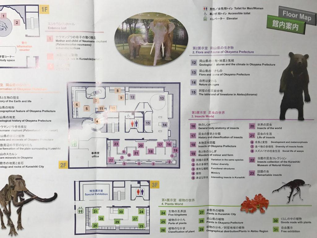 倉敷自然史博物館のフロアマップ