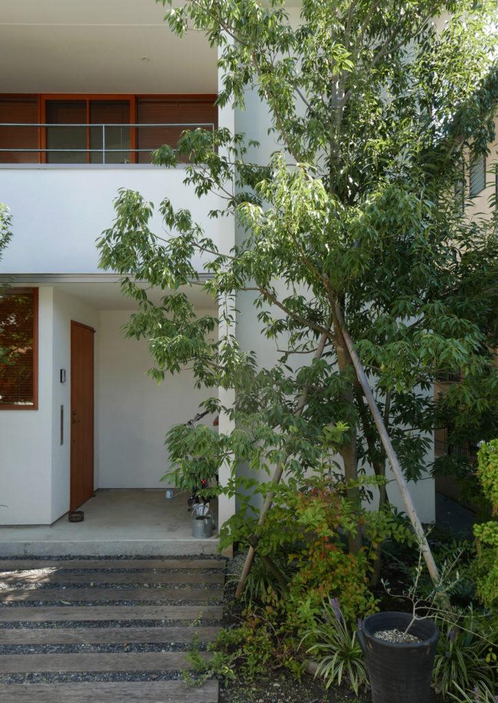 丸山弾設計の石神井の家の玄関ポーチ