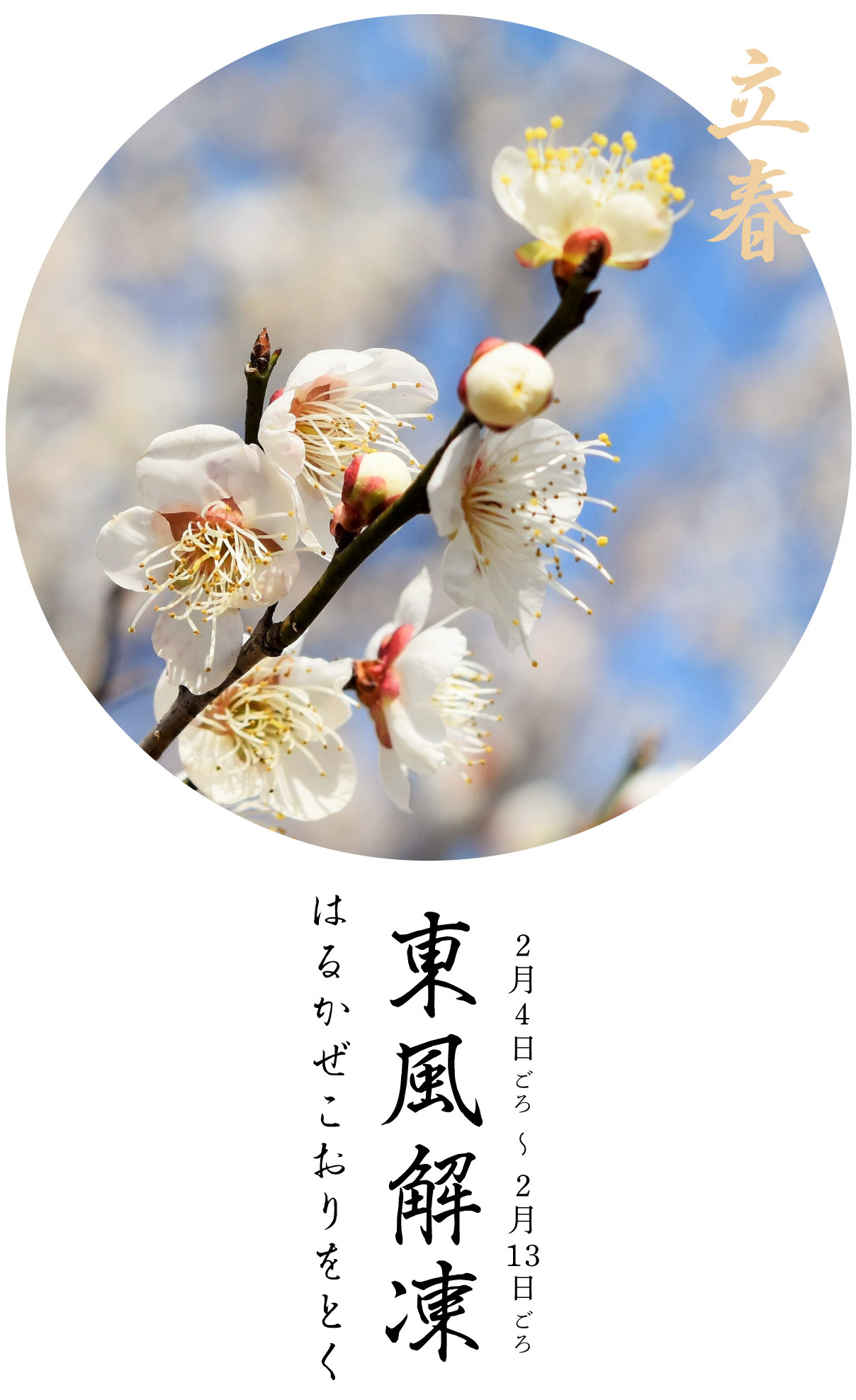 立春初候・東風解凍