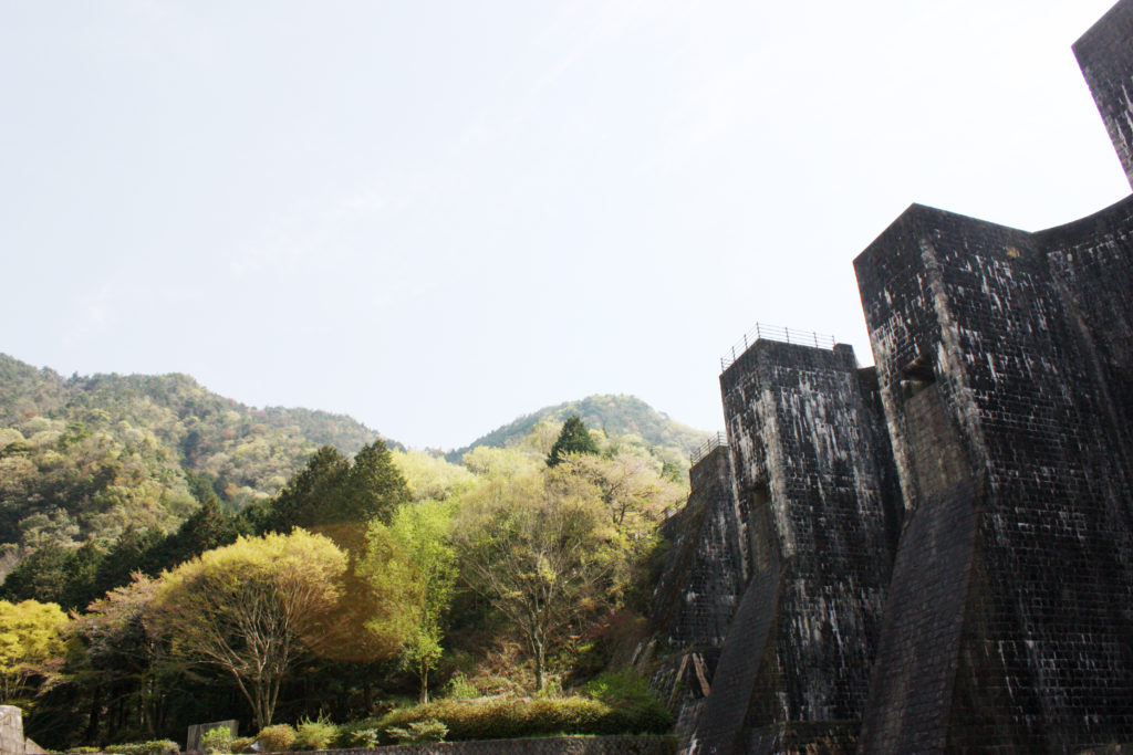 自然豊かな豊稔池ダム