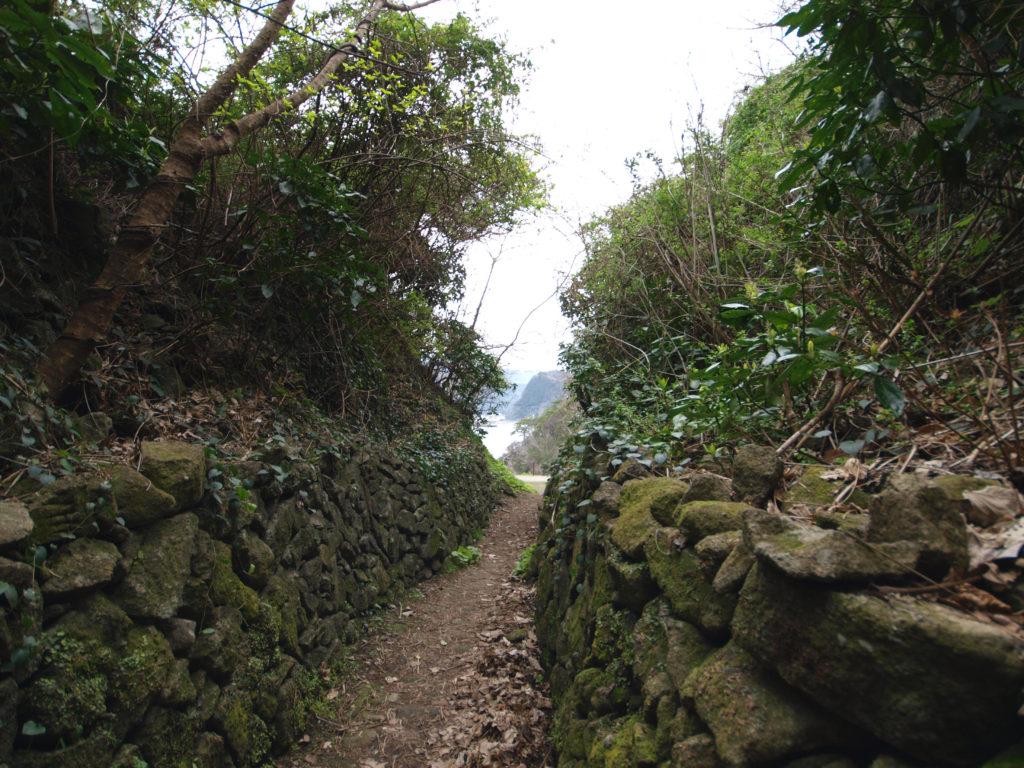伊豆の海へ抜ける小道