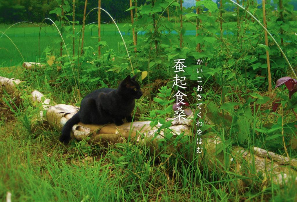 猫と蚕起食桑