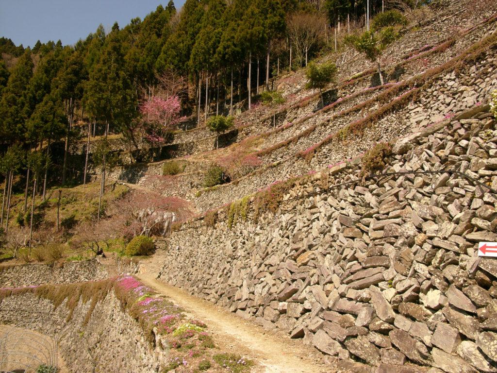 山の斜面に石が積みあがっている高開の石積み