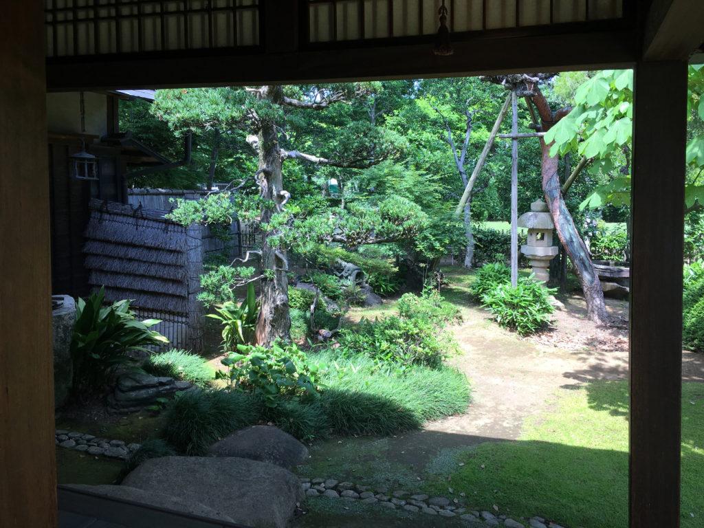 三方の広縁から見る庭