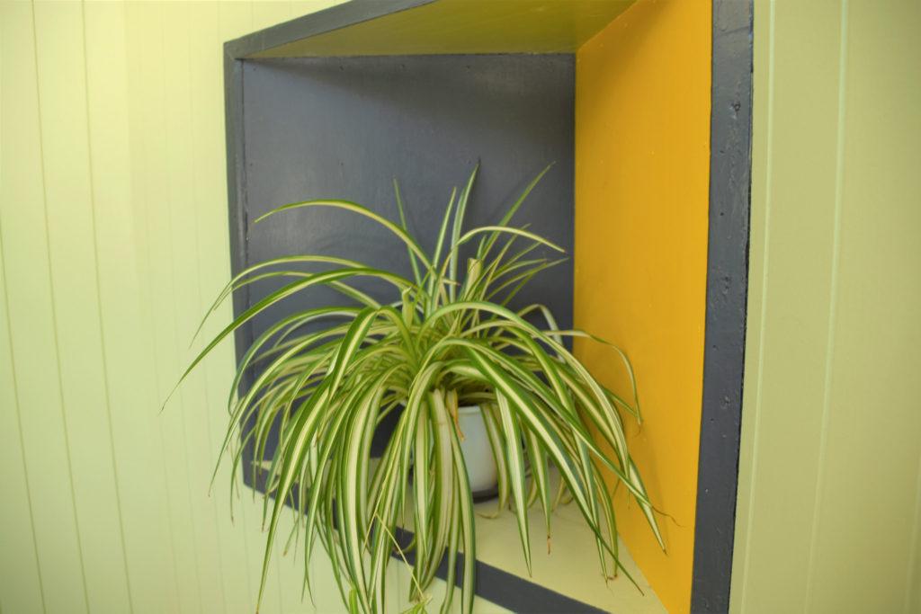 ニッチに飾られた植物