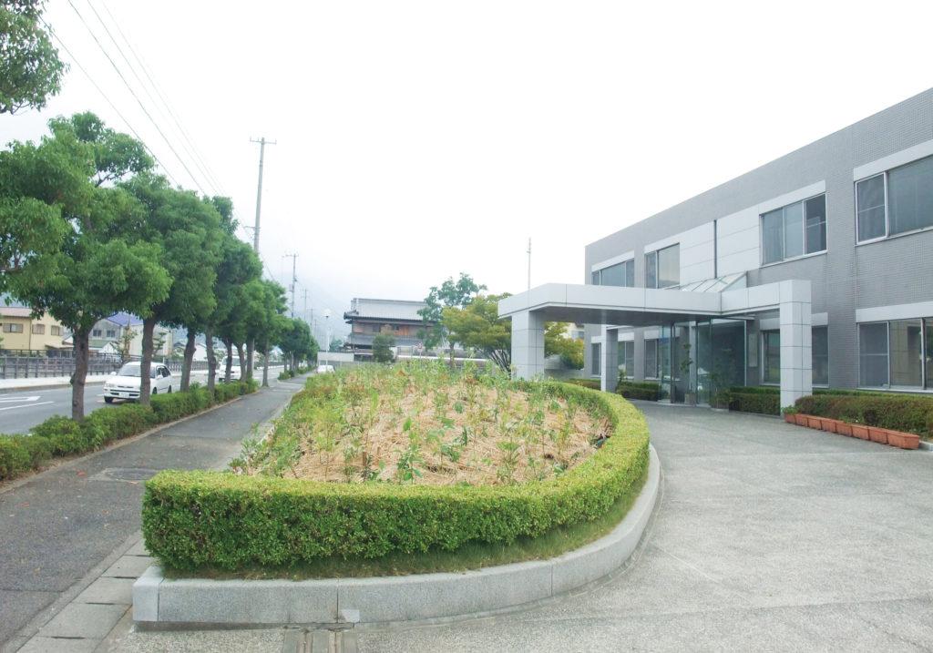 菅組の植樹before