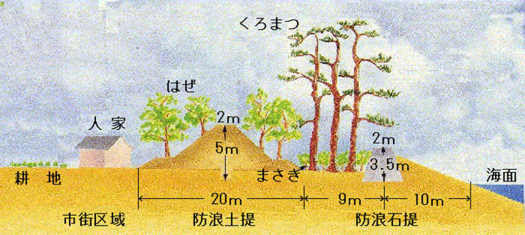 広村堤防横断図