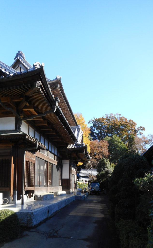屋敷林と伝統的な造りの屋敷